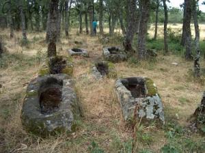 nec Necropolis Prado Nava 2