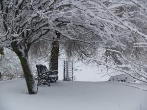 vilvi Parque del Campo nevado
