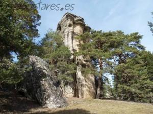 vilvi Peña la Torre